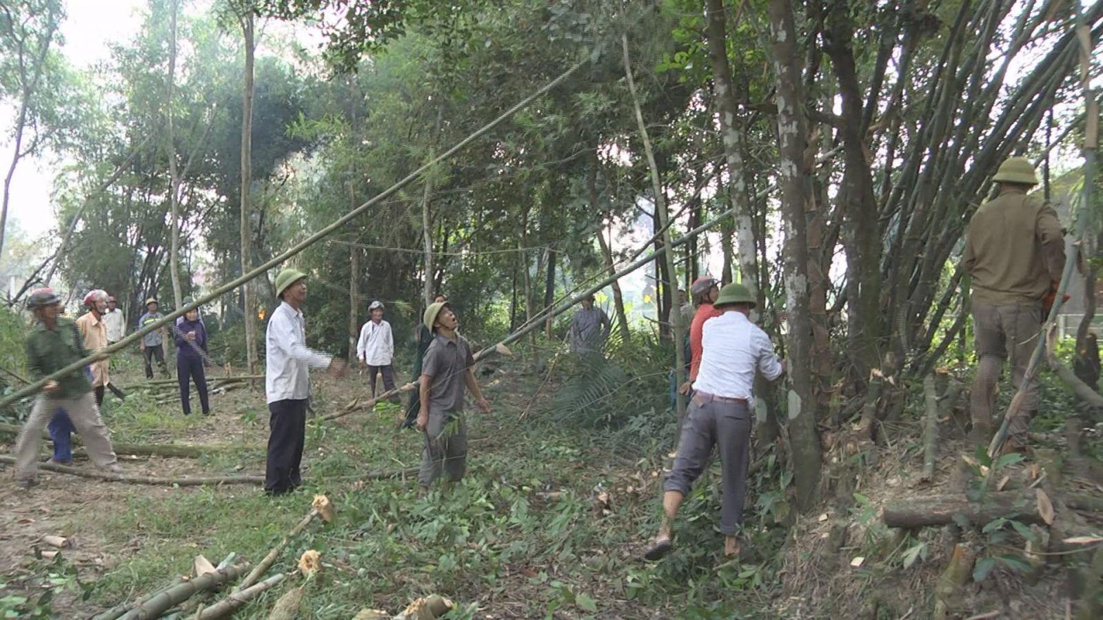 Trong thời gian qua, Hội CCB huyện đã huy động hơn 500 ngày công của các xã lân cận giúp các xã Cẩm Hòa, Cẩm Dương, Cẩm Sơn chỉnh trang vườn hộ, xây dựng vườn mẫu.